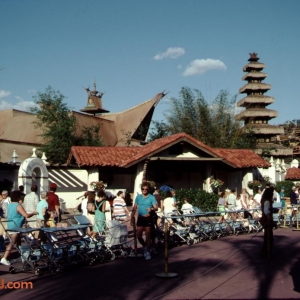 Adventureland (Treehouse Construction Visible)