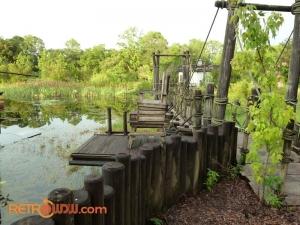 Bridge & Lifeguard