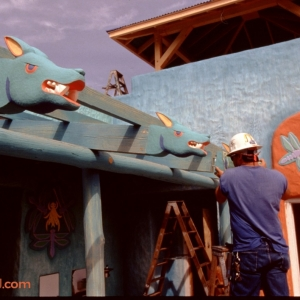 Animal-Kingdom-Construction-8-Legal-Clearace-Required