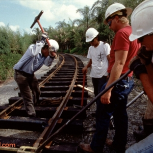 Animal-Kingdom-Rail-Construction-Legal-Clearance-Required