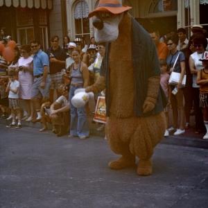 Brer Bear 1972