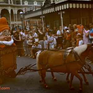 Dwarf Horse 1972