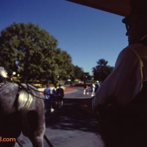 Main Street USA Horse Drawn Trolley  Ride