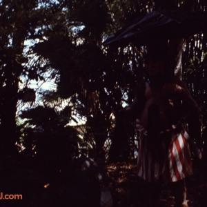 Trader Sam Aug 78