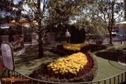 Plaza Topiary Aug 78