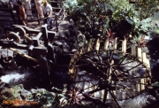 Treehouse Waterwheel Aug 78