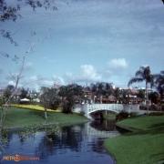 Swan Boat Waterway December 72