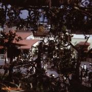 Treehouse December 72