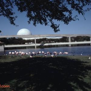 EPCOT Center November 1992_9