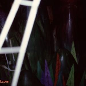 1979 Slides Set 3030