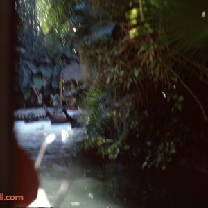 Jungle Cruise 12 1979