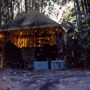 Jungle Cruise 9 1979