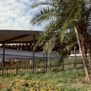 Monorail Platform 1979