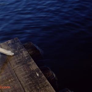 Rivers Dock 1979