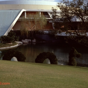 Serpent Topiary 1979