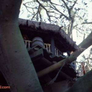 Treehouse 2 1979