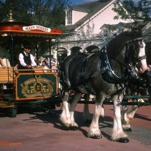 Main street horse drawn trolley 1982