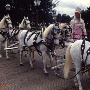 Magic Kingdom Dec 28 1989_118