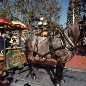 Magic Kingdom Dec 28 1989_149