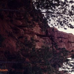 Magic Kingdom Dec 28 1989_171