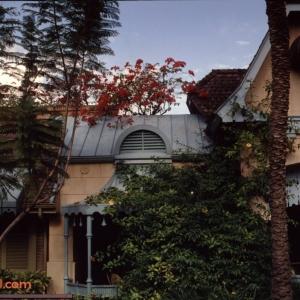 Magic Kingdom Dec 28 1989_175