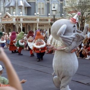 Dumbo Dwarf May 72