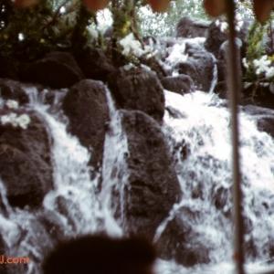 Jungle Cruise Inspiration Falls