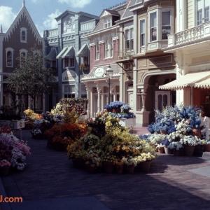 Center Street Flowers