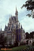 Castle Spring 84