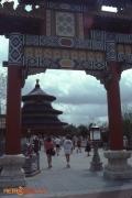 China Spring 84