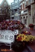 Flower Market Spring 84