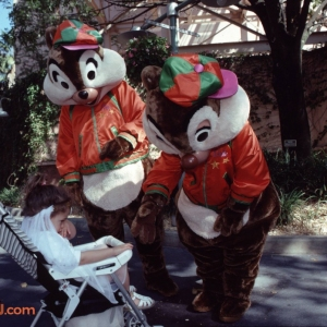 MGM Dec 199317