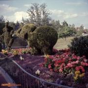 Fantasyland Topiaries and Garden