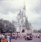Cinderella Castle with a side of Jitney