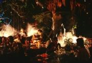 Downtown Disney - Rainforest Cafe - Inside