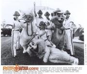 Devo With The Aristocats 1980