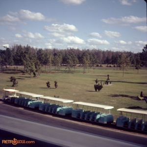 Topiaries Early 1972