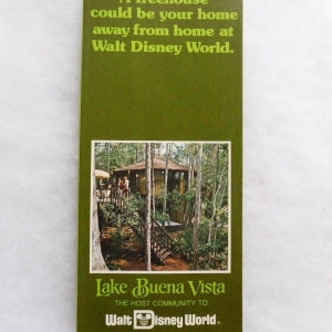 Lake Buena Vista Brochure
