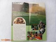 Lake Buena Vista Brochure Inset