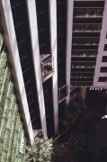 Hyatt-Grand-Cypress-Glass-Elevators