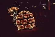 July-1982-Electrical-Parade_5