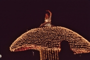 July-1982-Electrical-Parade_6