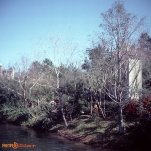February 1978 Polynesian & MK Titus23
