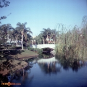 February 1978 Polynesian & MK Titus21