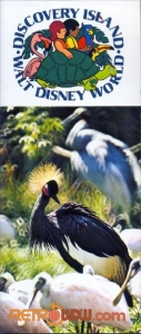 Discovery Island Postcard Book Cover