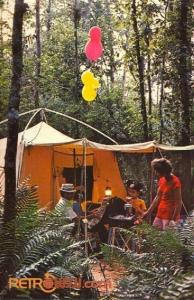 Camping Postcard