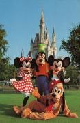 Magic Kingdom Postcard with Mickey and Friends