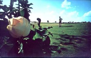 Magnolia Course