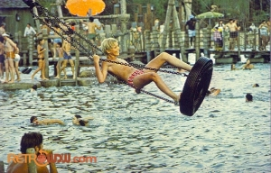 Tire Swing Postcard