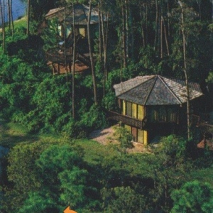 Treehouse Villas
